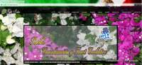 41-muestras web_0000s_0040_Layer 5